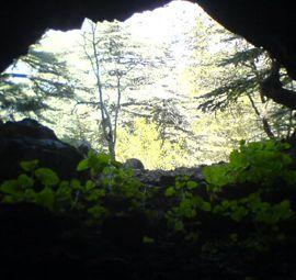 kurtini mağarası