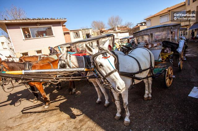 İstanbul Adalar Atlı Taşıma Gün Turu